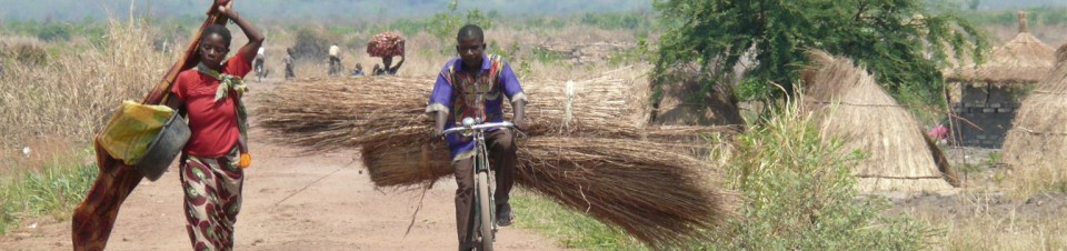 A man on a bicycle is seen transporting thatching grass in Kantaramba village in Kaputa district in Zambia's Northern Province.