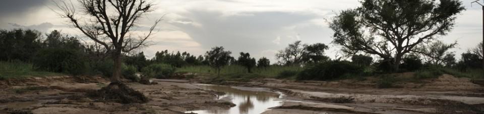 Route de Kollo (région de Niamey) : dégâts provoqués par la crue d'une rivière.