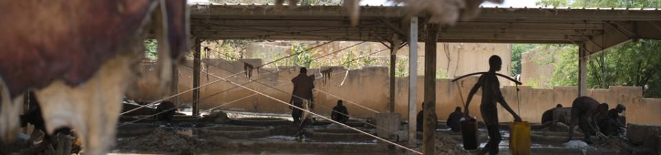 Grande Tannerie au bord du fleuve Niger.