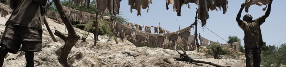 Grande Tannerie au bord du fleuve Niger. Deux tanneurs font sécher les peaux de bêtes au soleil