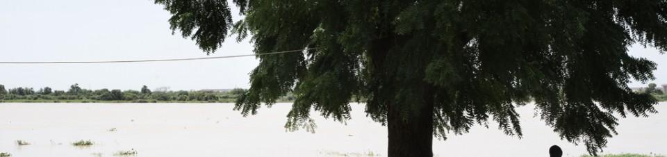 A proximité́ de la Grande Tannerie, un homme arrose son potager avec l'eau du fleuve Niger.