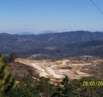 Green Voices of Borneo