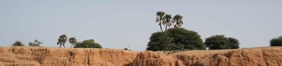 Pour se rendre à leurs écoles menacées par l'érosion, les enfants du village de Seno doivent escalader ces petites falaises creusées par les crues d'une rivière.